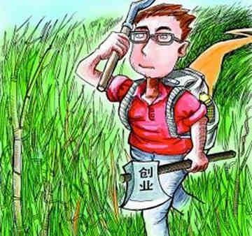 农村人创业 创业12条成功之路